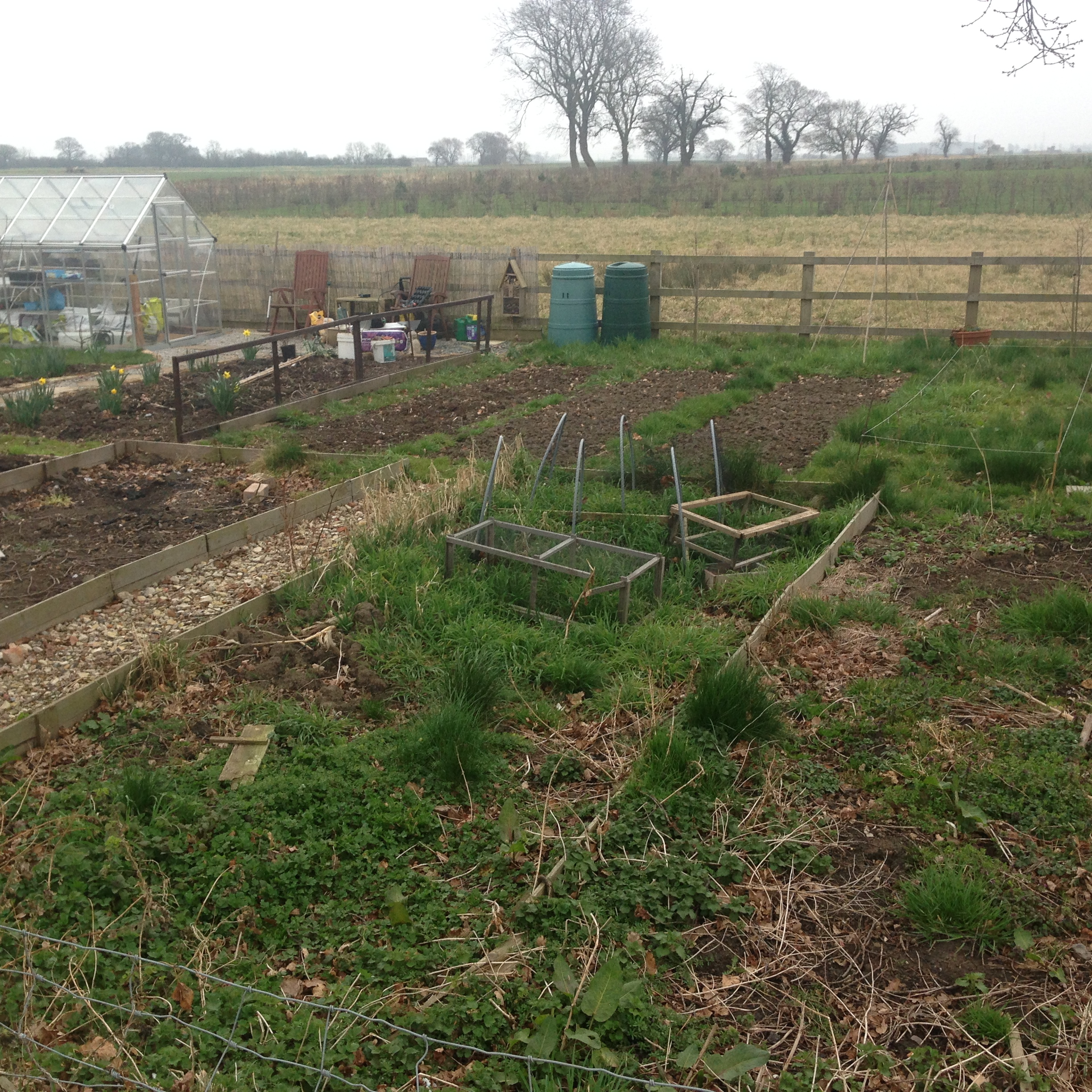 Picture of the Allotments